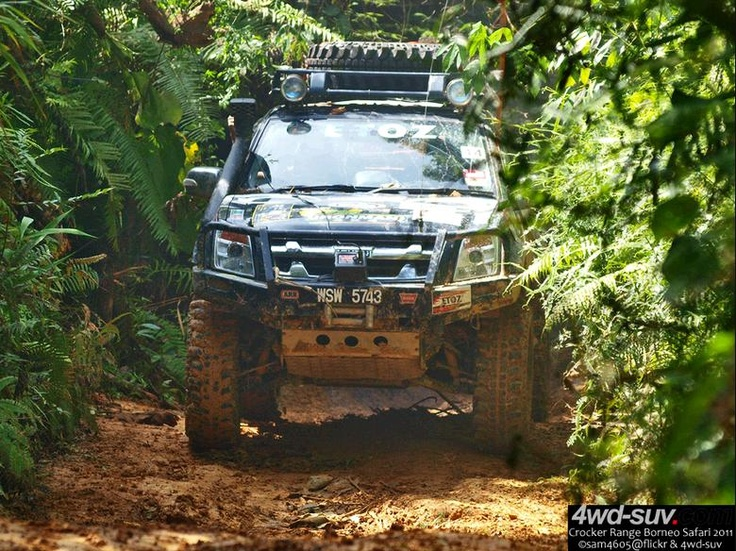 Borneo Safari 2011 - Day 7 - Isuzu DMax