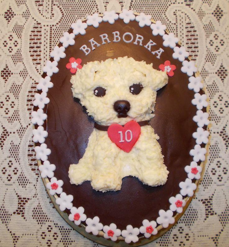 Maltese Puppy - Pro 10-ti letou paničku maltézáčka - piškotový dort s meruňkovou náplní