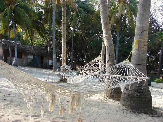 hammocks! Sol Palmeras beach resort in Varadero, Cuba