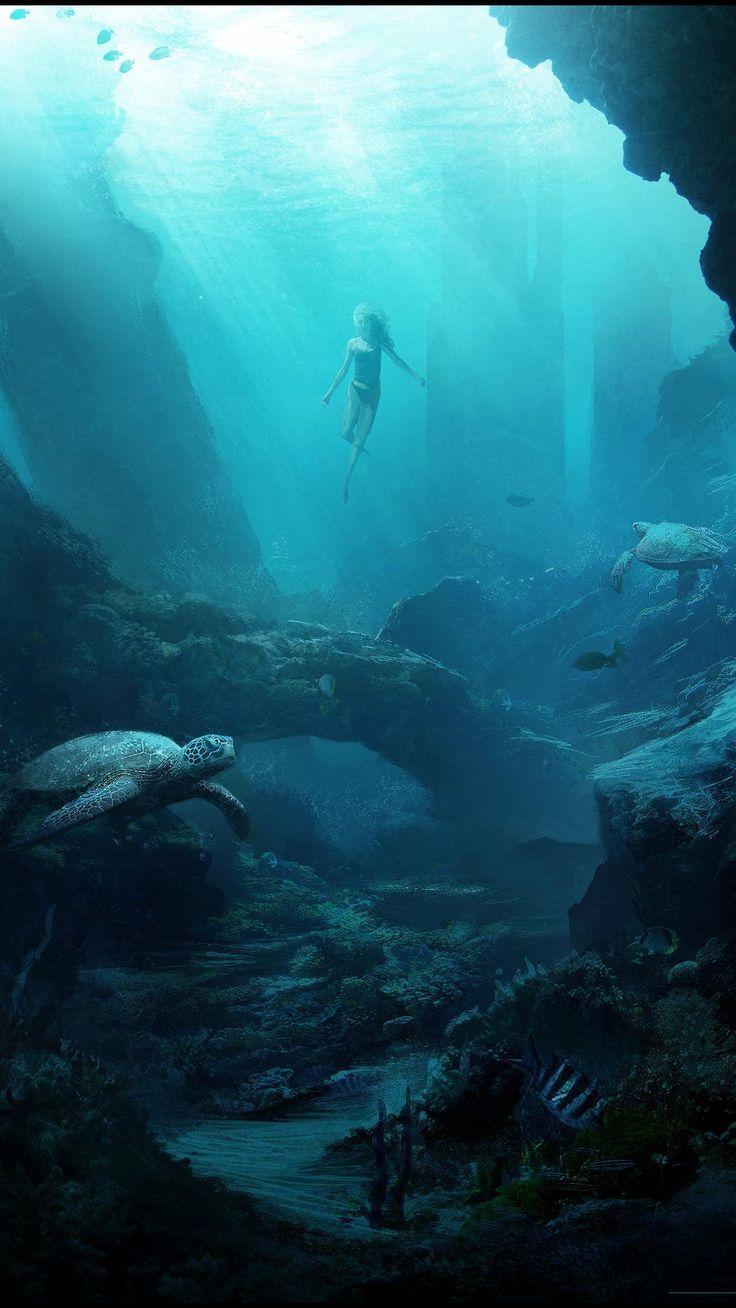Underwater Photography Landscape Underwater Photography Landscape Unterwasserfotogra In 2020 Underwater Photography Ocean Underwater Photography Fantasy Landscape