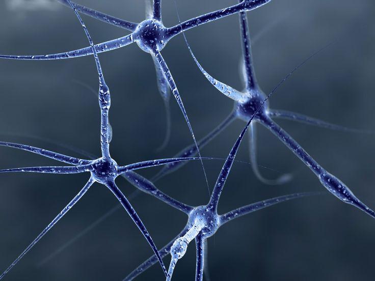 Прошлое определяет будущее, или недостаток «пазлинглишь»   В книге «Будущее разума» Митио Каку я прочитала, что для восстановления воспоминаний используются те же области мозга, что и для моделирования будущего.   Таким образом, чтобы «проектировать» или прогнозировать будущее, нужна долговременная память, и от того, каким содержанием она наполнена зависит то, что мы можем себе представить. Поэтому «люди, страдающие амнезией, часто не в состоянии представить, что они будут делать в будущем…