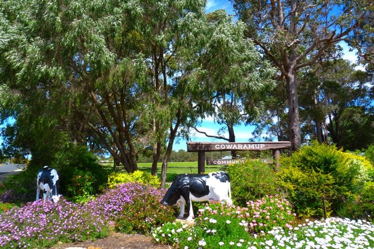 Cowaramup in South West Australia from Top 10 Things to do around Margaret River and Cowaramup via ZigaZag