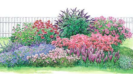 Schmetterlingsgarten - Seite 2 - Mein schöner Garten Das etwa 2,50 x 4 Meter großeSchmetterlingsbeetwartet nicht nur mit zwölf verschiedenen Nektarpflanzen für Schmetterlinge auf – dank seiner lang anhaltenden Blütezeit vom Frühling bis zum Herbst bietet es auch dem Auge etwas. Die Zeichnung zeigt das Beet zum Blütenhöhepunkt im September. Der Blütenreigen beginnt aber schon im April/Mai mit Flockenblume, Malve, Schleierkraut und Blaukissen. Weiter geht es im Sommer mitKatzenminze…