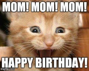 Happy birthday Meme Cats