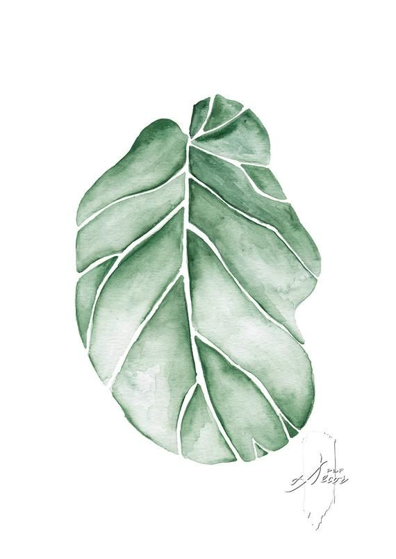 Tropical Leaves Watercolor Tropical Print Botanical Watercolor