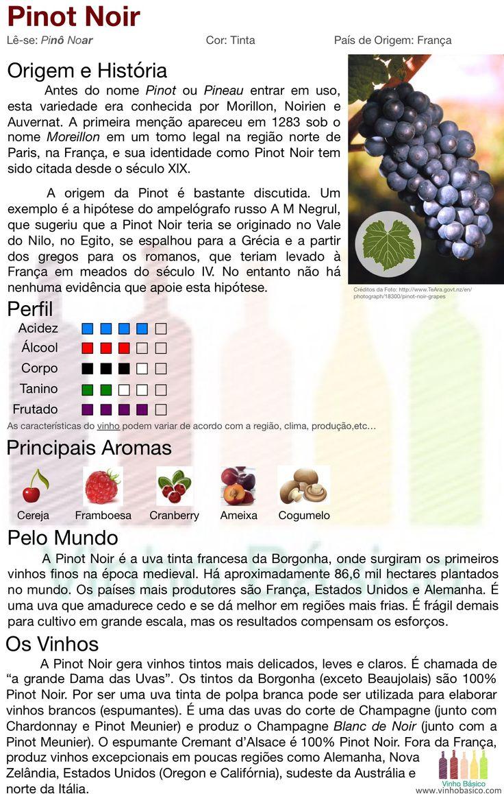 Pinot Noir vinhobasico