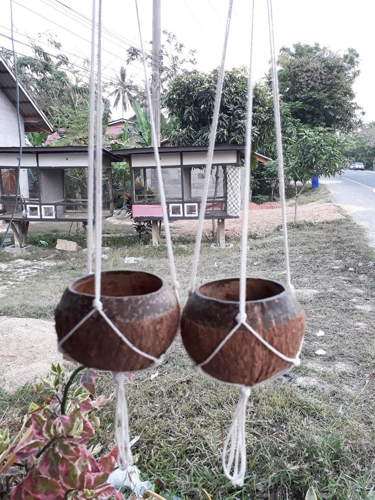 2 PCS DIY Two tone natural coconut shell Hanging Planter Pot Outdoor Garden #Unbranded