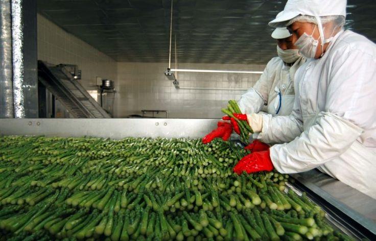 En 2006 les scandales se multiplient. Alerte à la listeria avec la panga du Vietnam, alerte à l'E.coli avec les palourdes de Turquie, alertes diverses sur les produits alimentaires provenant de Chine... La vigilance est à son comble.
