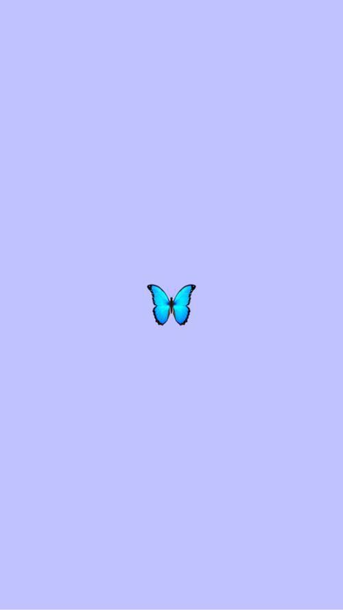 Get Cute Lock Screen Aesthetic Butterfly Wallpaper Pictures