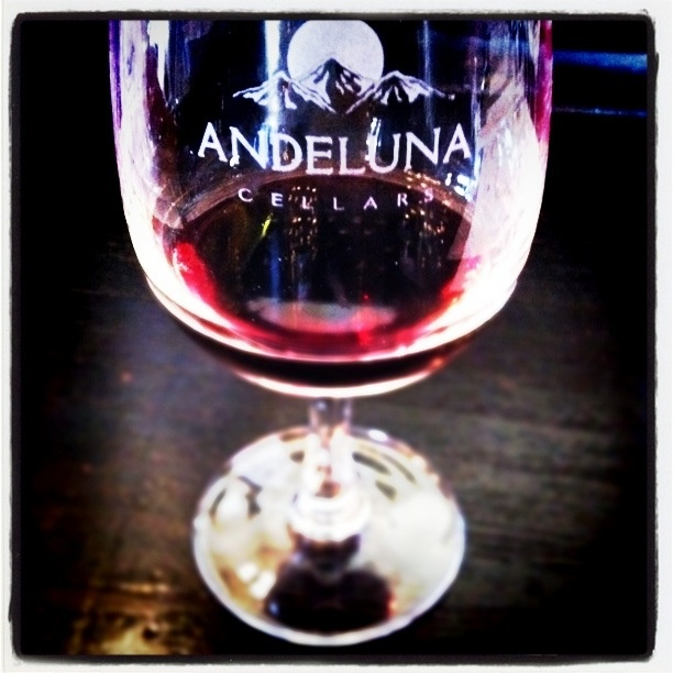 Andeluna Winery in Mendoza, Argentina