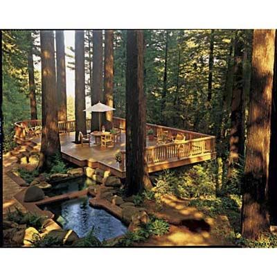 Chopping down the towering trees here would have been a crime, so the owners of this California deck built around them. | Photo: Courtesy of Olympic, PPG Industries. | thisoldhouse.com