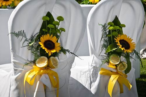 addobbo-sedie-cerimonia-con-girasoli
