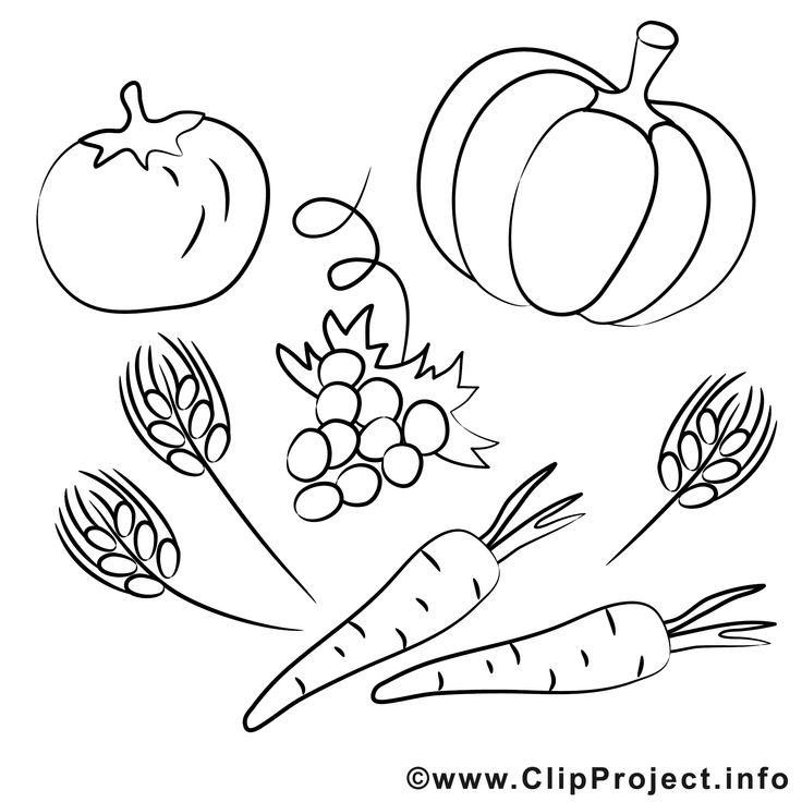 bildergebnis für malvorlage gemüse  kostenlose