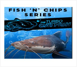 888Poker: The Catfish