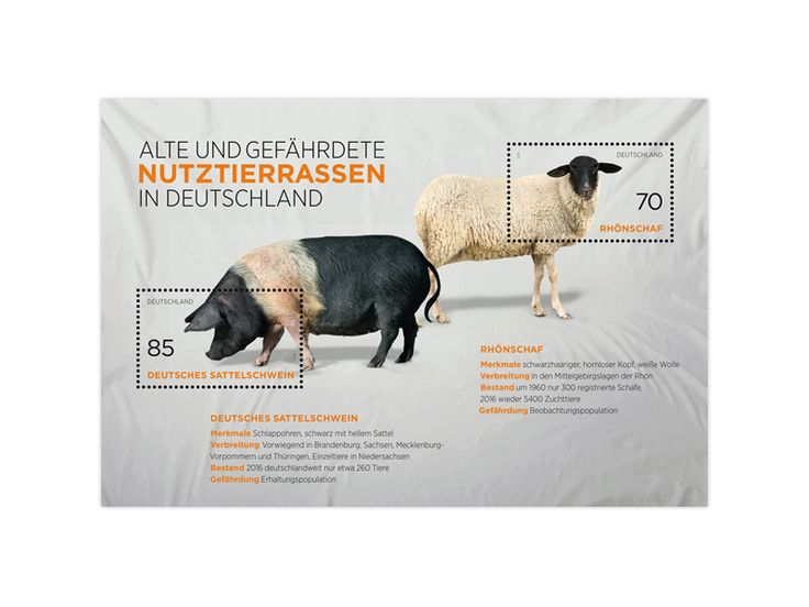 COLLECTORZPEDIA Old and Endangered Breeds in Germany