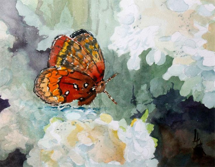 150 Best Butterfly And Flower Paintings Images On