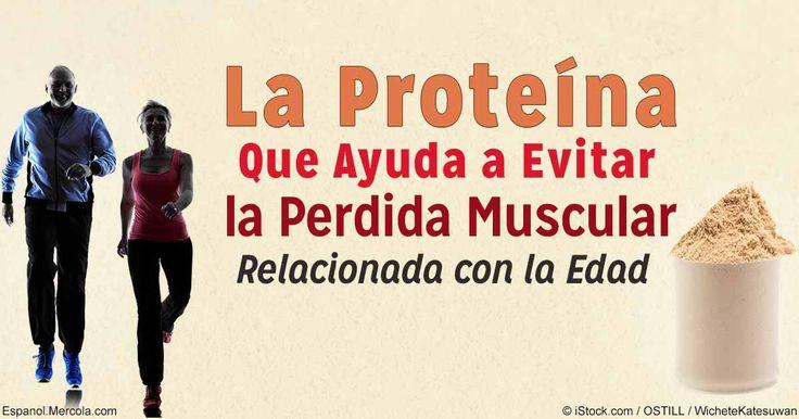 La proteína de suero de alta calidad contiene leucina, un aminoácido que promueve la construcción de músculo y ayuda a prevenir la pérdida muscular. http://ejercicios.mercola.com/sitios/ejercicios/archivo/2016/09/09/proteina-en-polvo-para-el-desarrollo-muscular.aspx