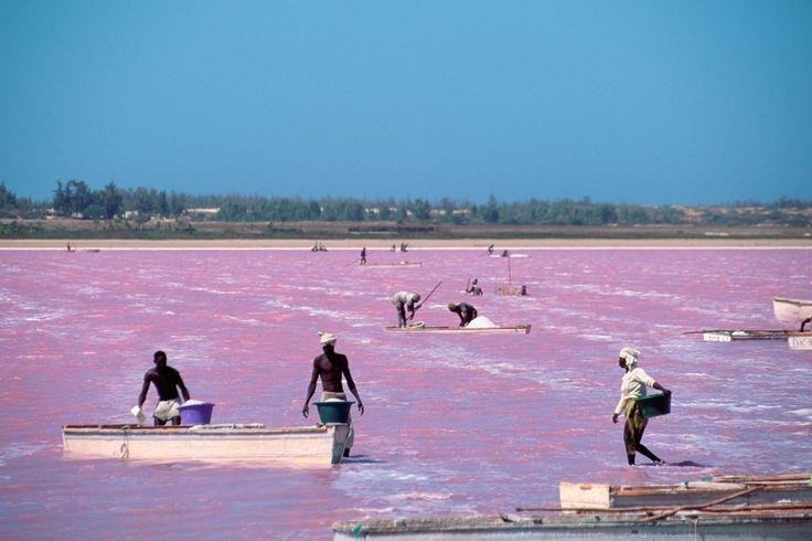 Lago Retba, Senegal. El Retba es una laguna enorme de poca profundidad y cuyo alta salinidad hace que todo flote.