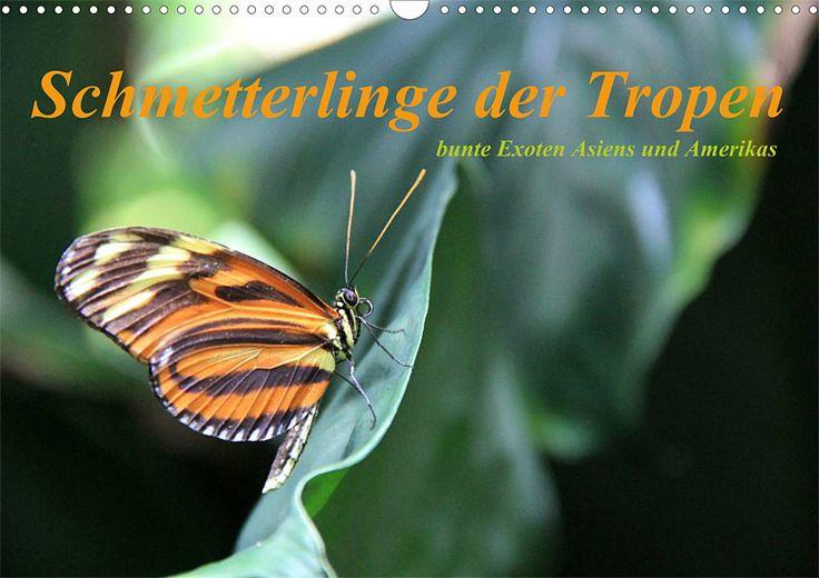 "Tier-Posterbuch ""Schmetterlinge der Tropen"", Cover"