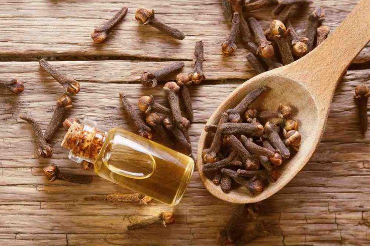 Olio essenziale di chiodi di garofano: proprietà e benefici