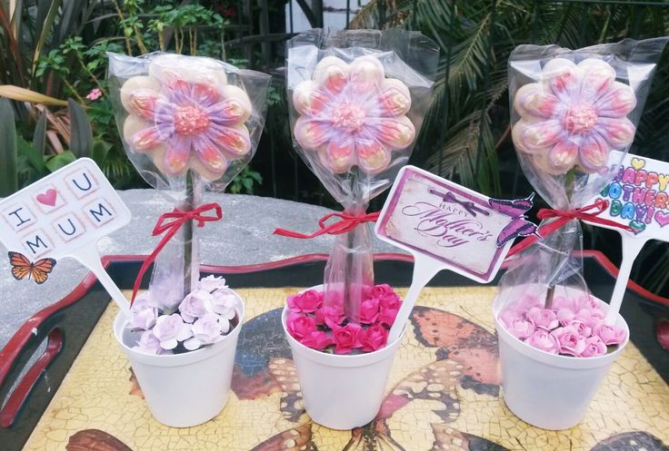 Flower Pot cookie gifts, with custom message stick