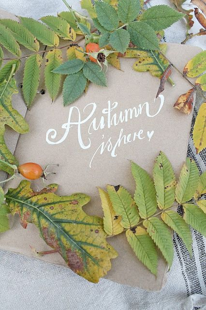 Today to celebrate the 1st day of Autumn and I thought we would have a party with Autumn food, pumpkin, squash, poultry, pies, apples, root vegetables and great harvest table table decor. TODAY WE ARE PINING THE TASTES OF THE AUTUMN SEASON!!