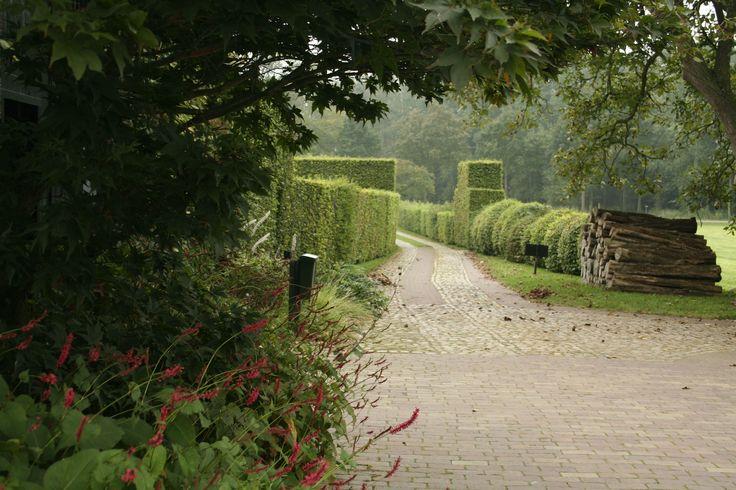 190 best piet oudolf personal garden hummelo the for Piet oudolf landscape architect