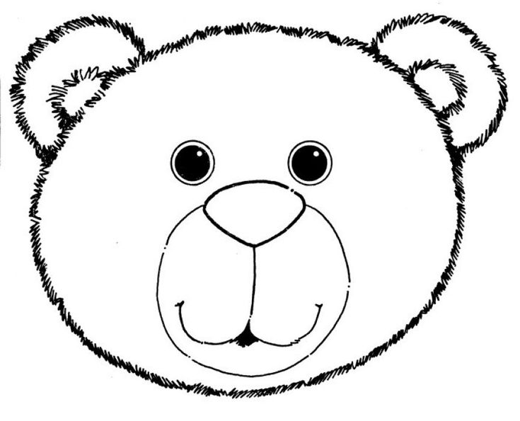 how to draw a black bear face