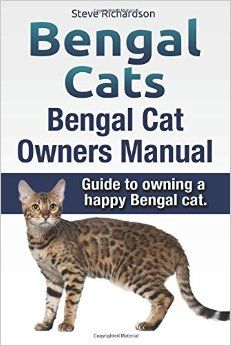 The large, muscular and attractive Bengal breed of cat is fast becoming very popular with cat lovers across the world.