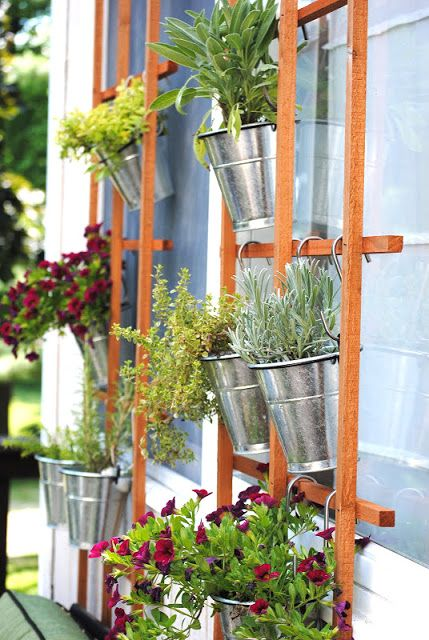 A lovely vertical herb garden trellis wall to dress up your windows, by making Lemonade, featured on I Love That Junk
