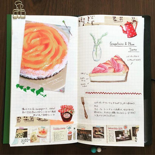 先週行ったa la campagneのカフェ絵日記 グレープフルーツとプラムがキラキラしてて、見た目も鮮やかなタルトでした #手帳 #絵日記 #日記 #トラベラーズノート #カフェ #タルト #マステ #マスキングテープ #スケッチ #diary #travelersnote #travelersnotebook #Cafe #sketch #sweets #maskingtape #washitape