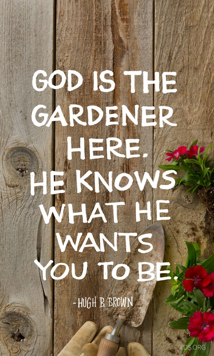"""""""God is the gardener here. He knows what He wants you to be."""" —Hugh B. Brown…"""