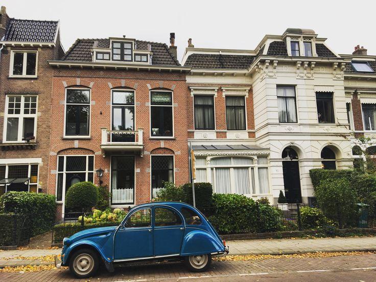 Haarlem, The Netherlands www.heyroets.co.za