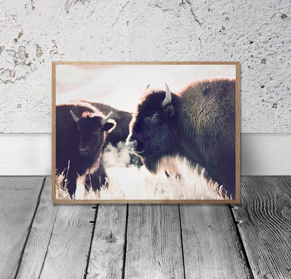 Bison Print - American Buffalo Print, Digital Download, Buffalo Wall Art, Southwestern Decor, Modern Bohemian Print, Tribal Print, Wild West  ************INSTANT DOWNLOAD*********************  Hello And Welcome to Sisi and Seb :)  Printable art is an easy, affordable way to style and personalise your home or office the way you like it. Whether you want to keep up with the trends or just print for a special occasion, it is the fastest and easiest way for you to decorated your space, or it…