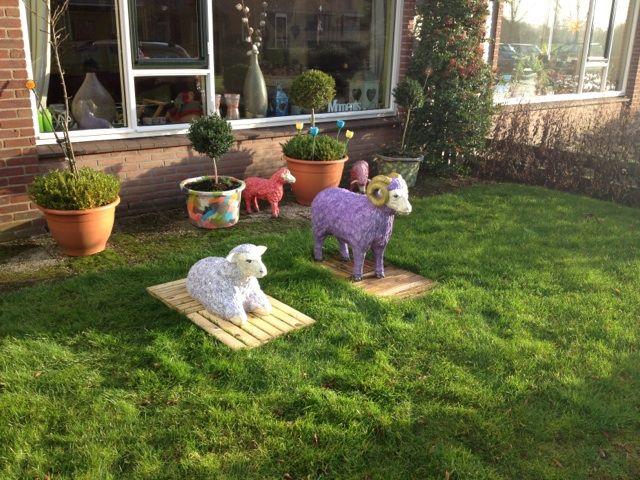 Schaap en ram in de tuin!