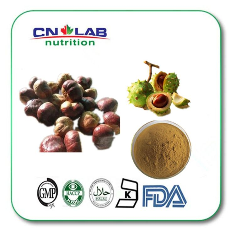High quality Semen Aesculi P.E/Horse chest Nut P.E (Aescin 20% by HPLC) 500g free shipping horse chestnut extract