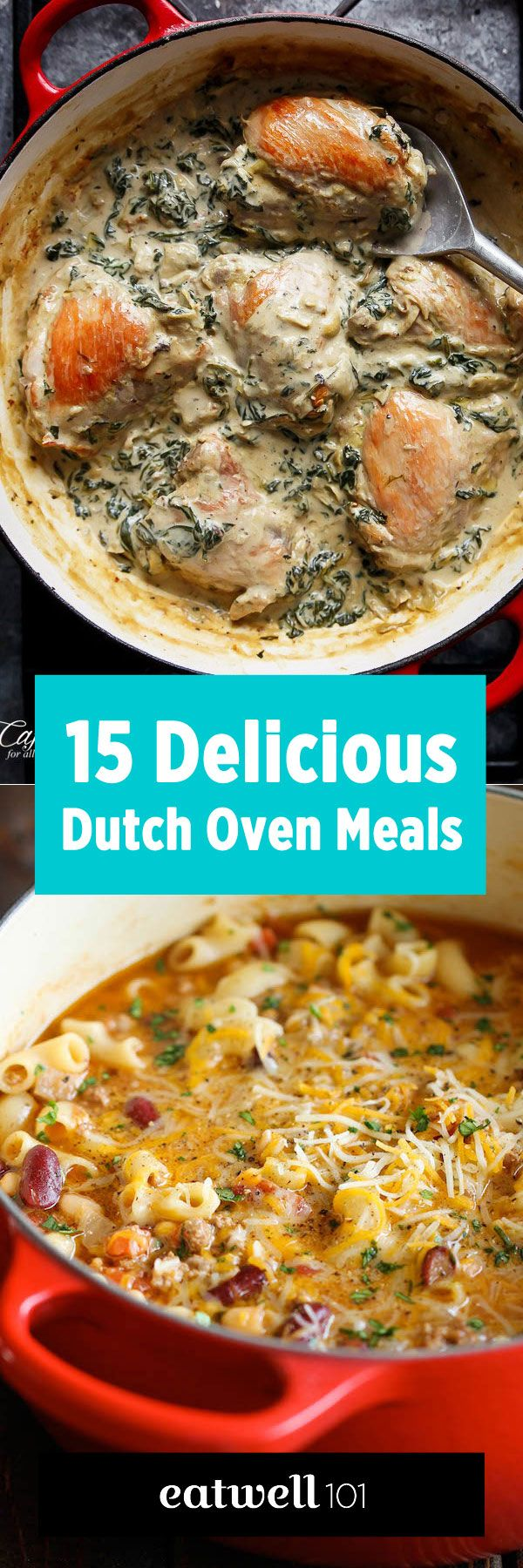 Don't stay behind, it's only a small investment for a lifetime of delicious meals! 15 delicious Dutch or French oven meals