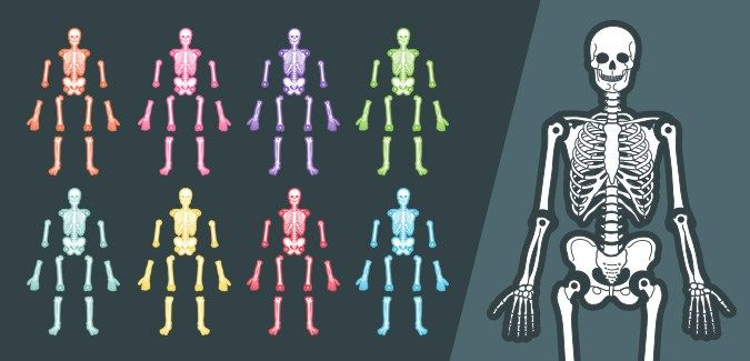 Printable Skeleton Template