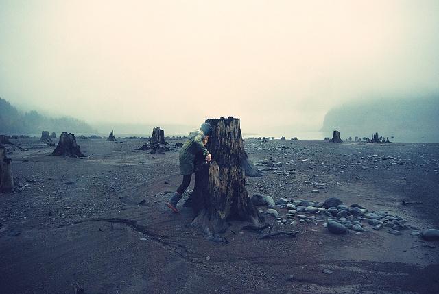 Oregon: Favorite Places, Fashion Statement, Photog Loveli, Bye Bye, Pacific Northwest, Beautiful Decay, Mothers Natural