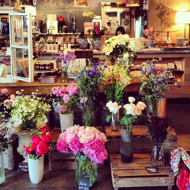 The Most Beautiful Flower Shop. Seattle.