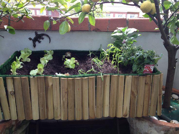 26 best huertos en terraza images on pinterest vegetable - Nebulizador casero para terraza ...