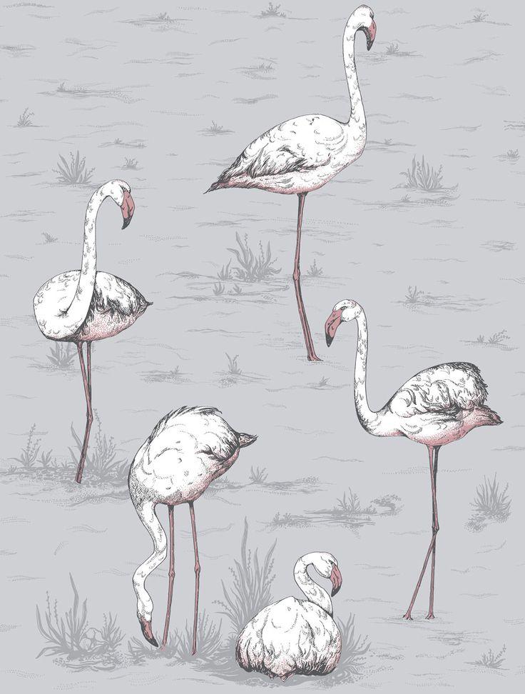 Cole & Son Flamingos Lilac Grey and Bronze Wallpaper main image