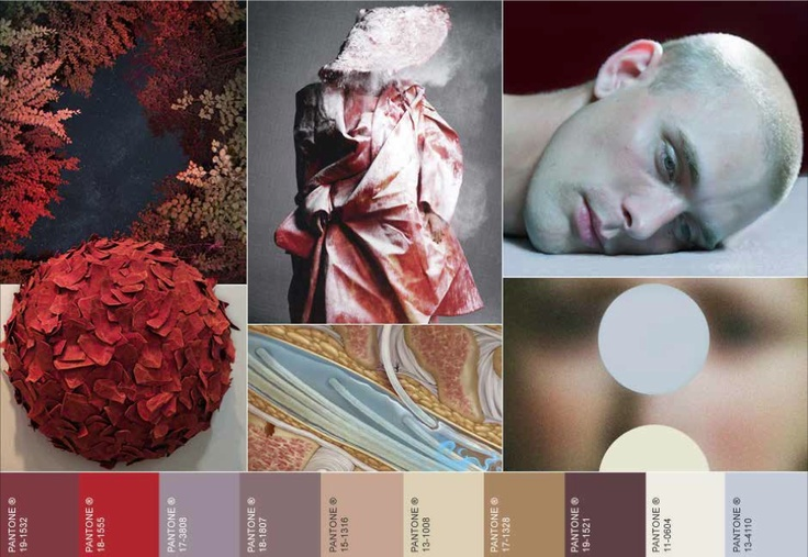 WGSN. AW14/15 colour inspiration -bloodlines