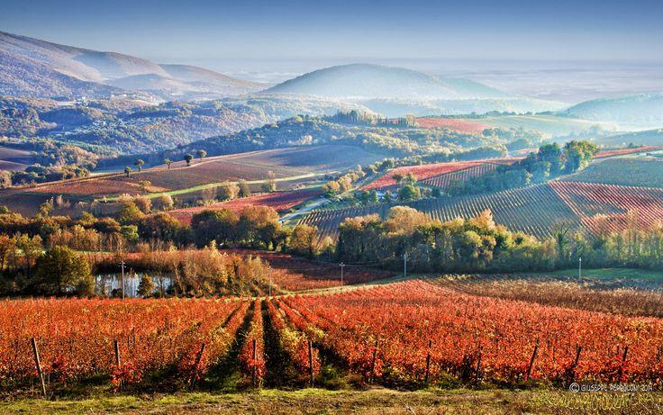 Paesaggio umbro - Le colline del sagrantino (vino DOCG), Umbria
