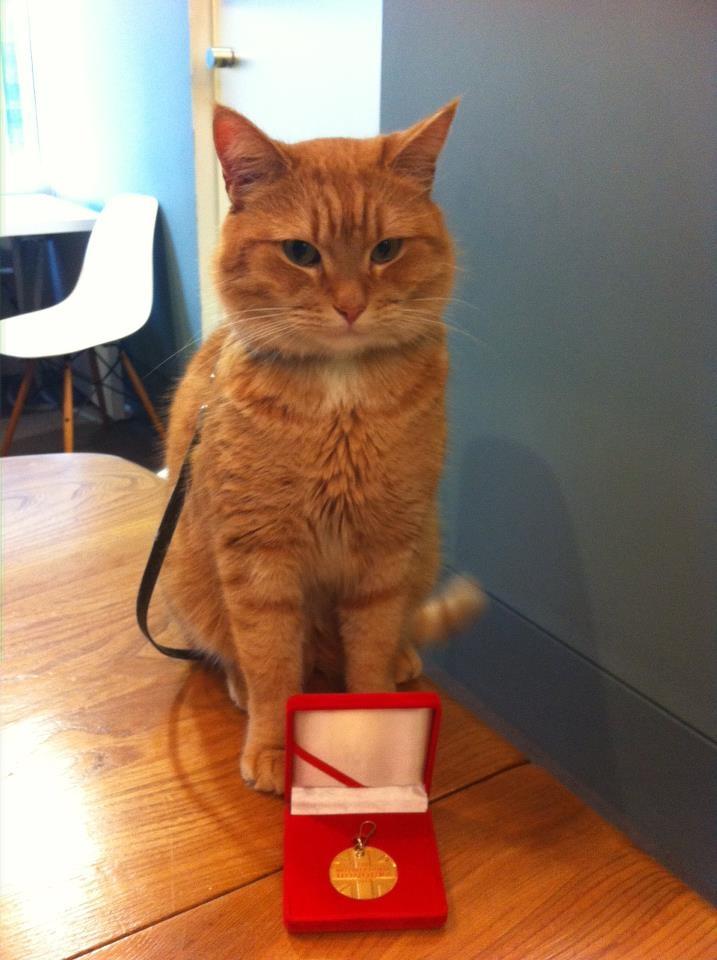 James Bowen & Street Cat Bob