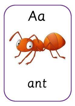 муравей на английском картинка паром