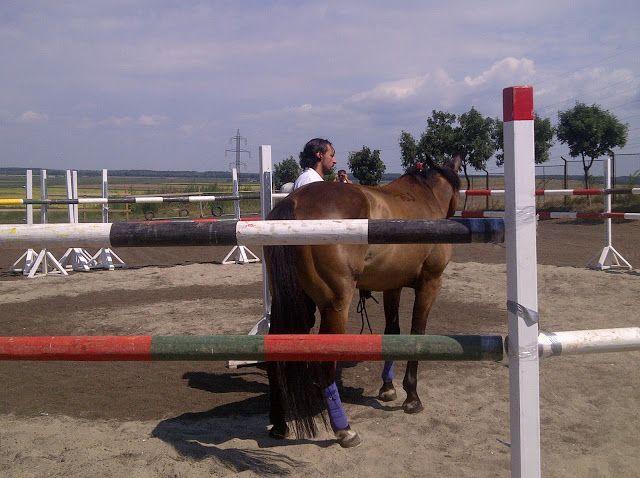 Macaulay Culkin loves horses