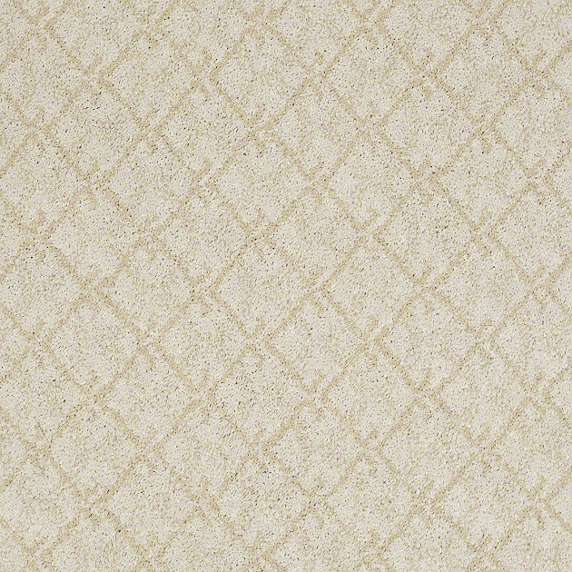 caress by shaw soft carpet collection