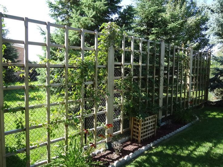 Sprucing up chain link fences