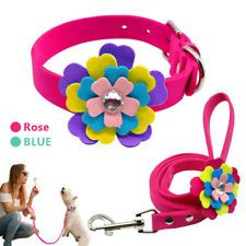 Flower Studded Suede Leather Cat Pet Dog Collar and Leash for Small Medium Dogs